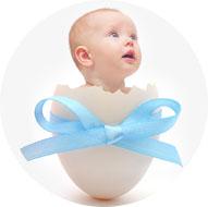 egg-donation,
